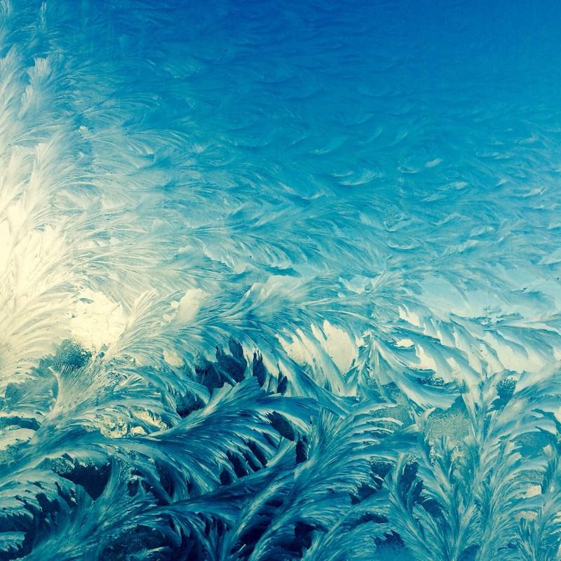 凍りつく窓