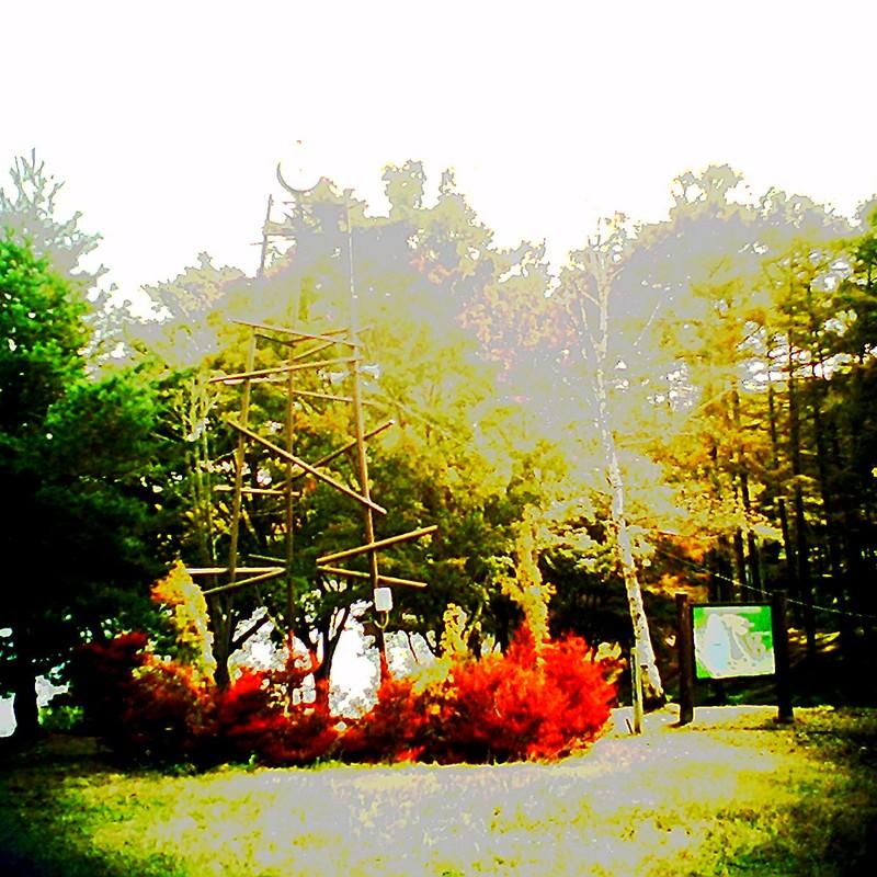 秋の追憶9