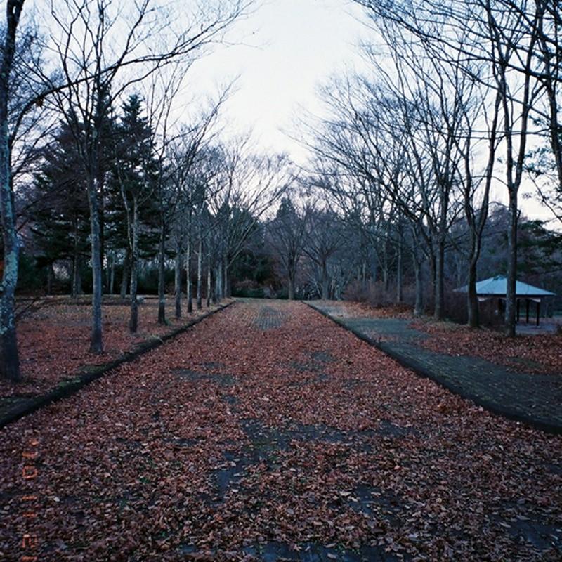 独り歩いた日