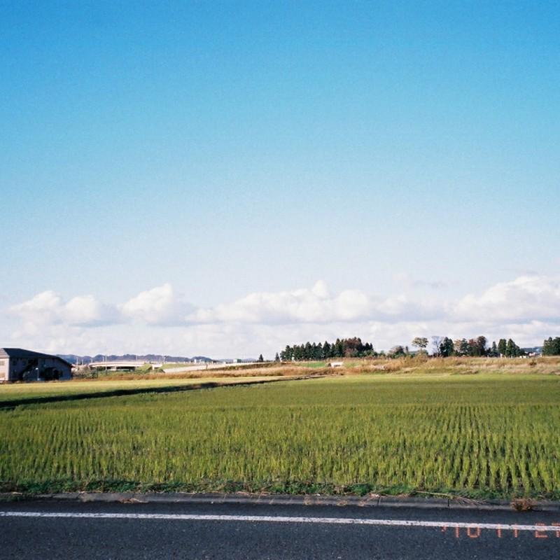 空、田んぼ