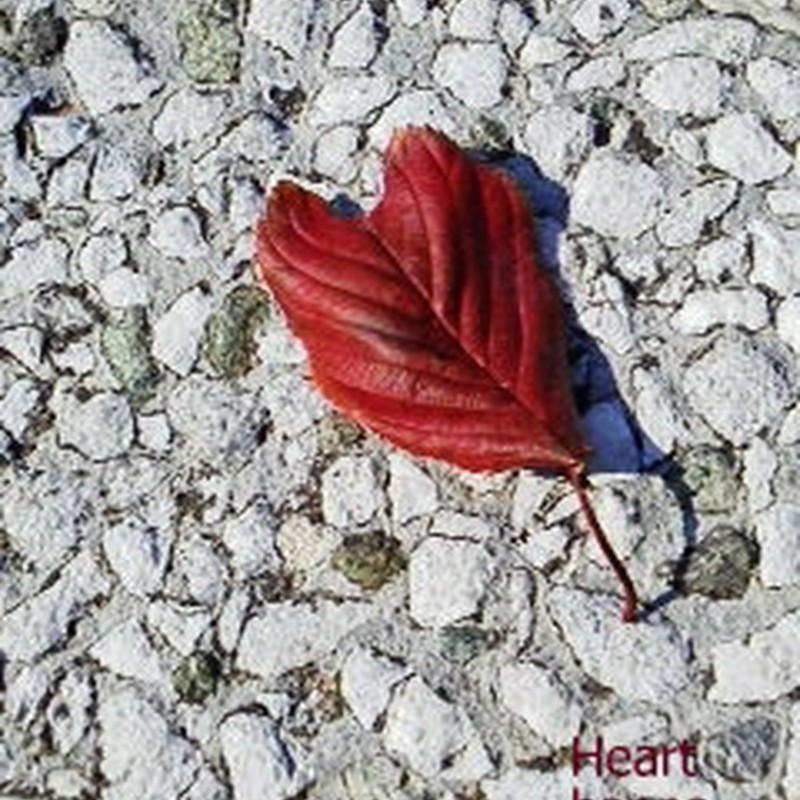 Heart  happa