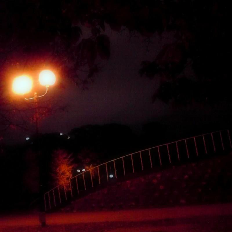 夜 公園  灯り