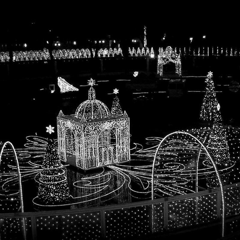 あえて白黒なクリスマスで。