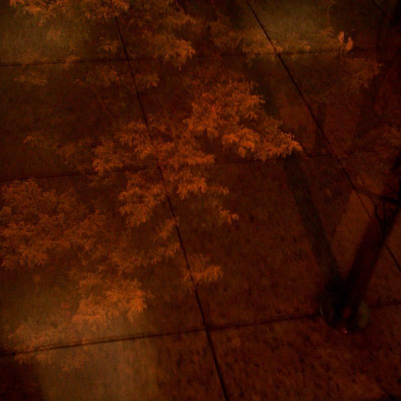 石の記憶…去りゆく秋への想い…