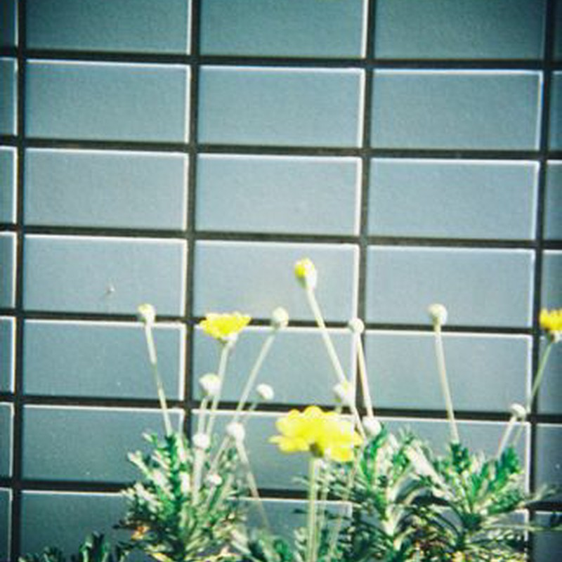 タイルとお花。