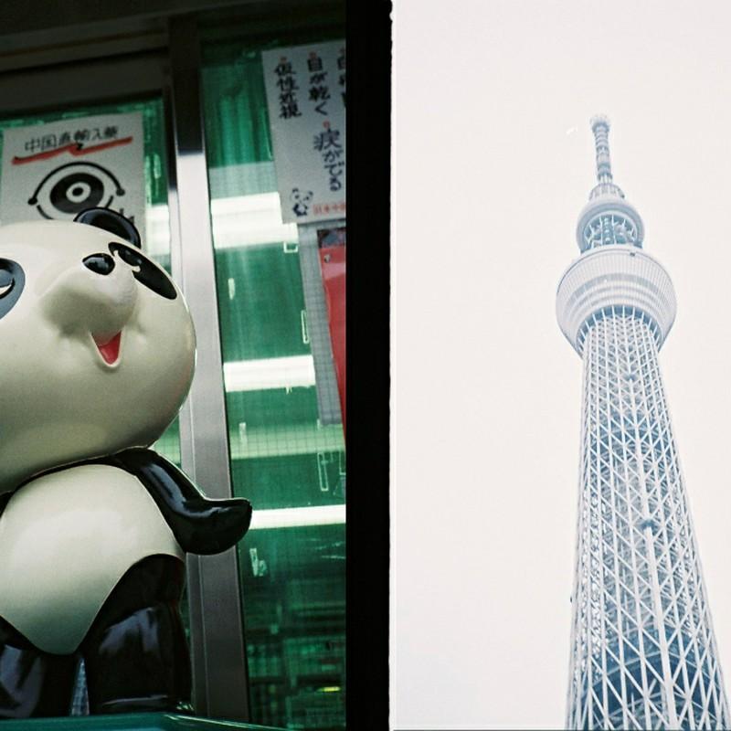 見上げる東京スカイナンタラー