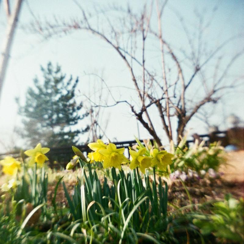 春のうれしさ