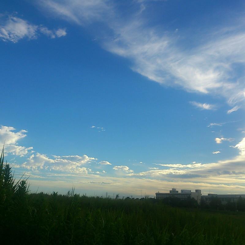 夏と秋の間の夕方の空の色は青かった