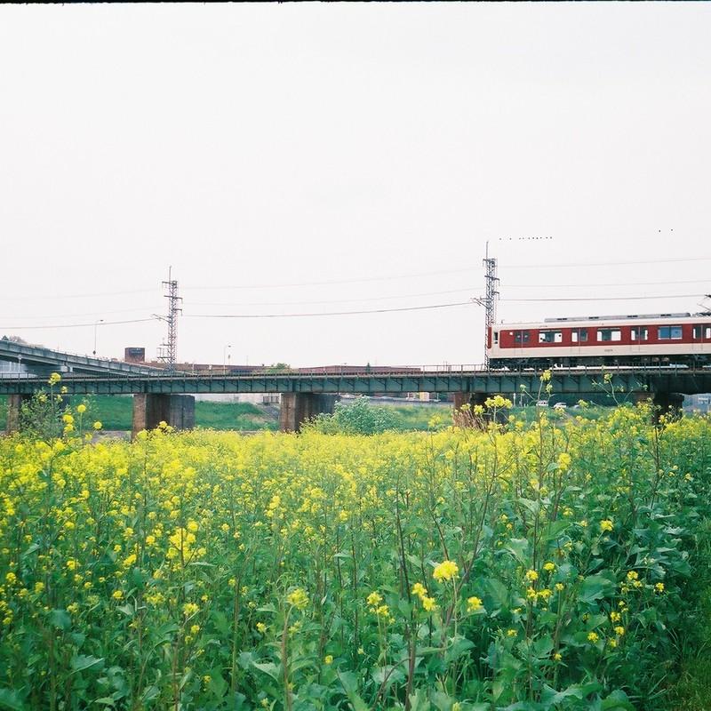 キャラメル電車