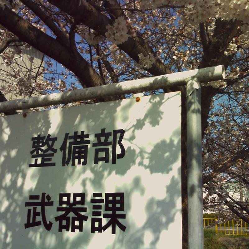 桜と武器課