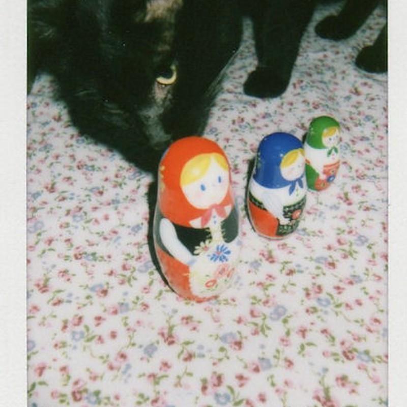 猫とマトリョーシカ