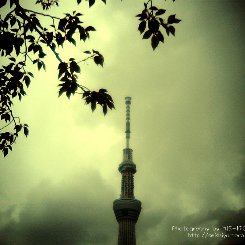 スカイツリーと曇り空