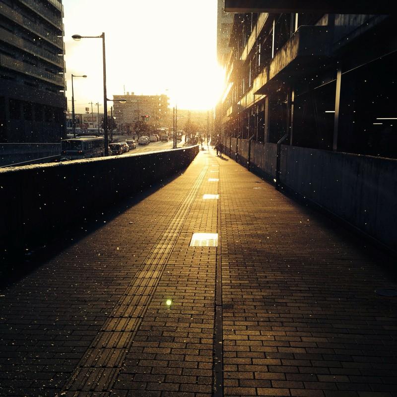素敵な朝でしたね。