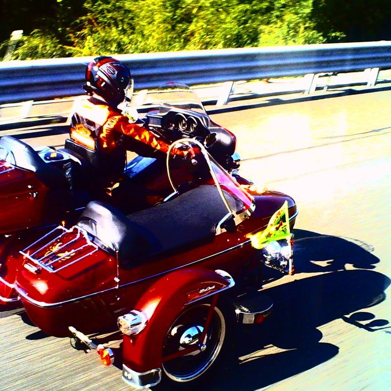 Harley A Go Go !!