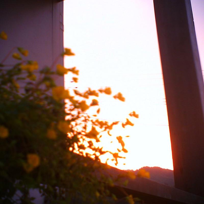 夕陽にとける