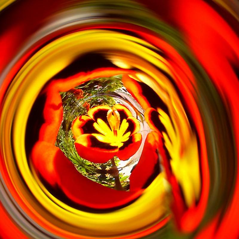 Spinning-Flower
