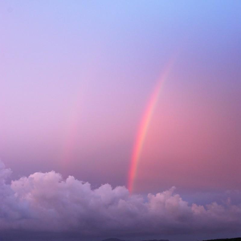 夕陽に染まる虹