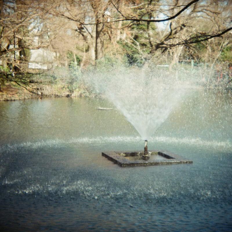 冬の公園の噴水