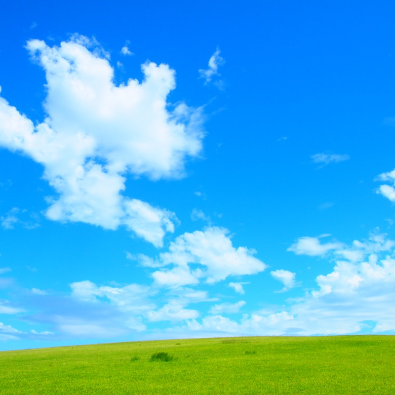 流れる雲を眺めていたい・・・