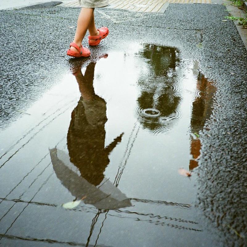 雨の日だから…