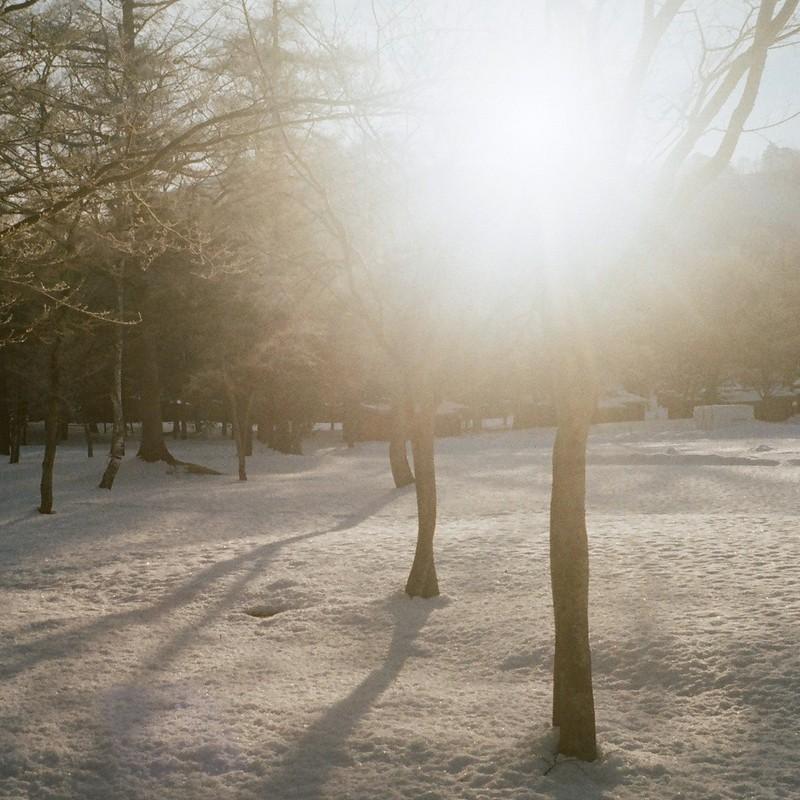 さよなら冬♪