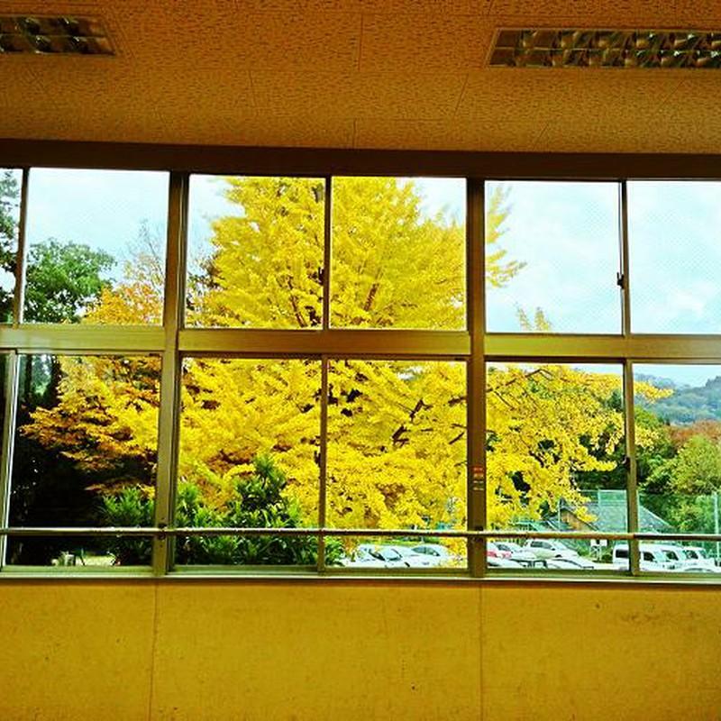 教室の窓から