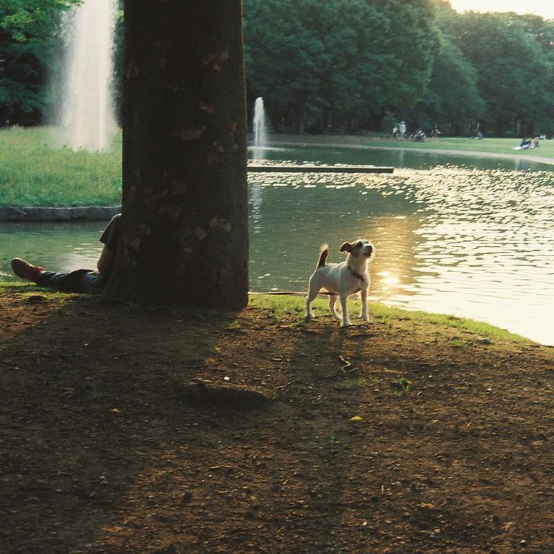 池のほとりで休憩