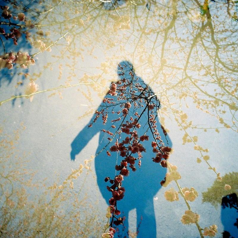 春と私の影