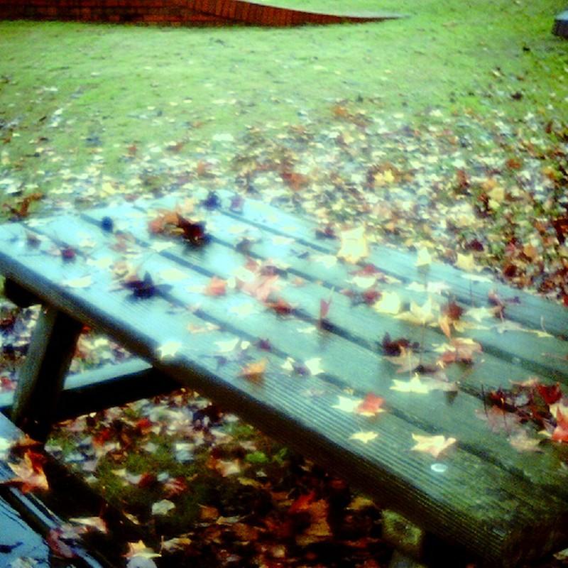 落葉に埋もれたベンチ