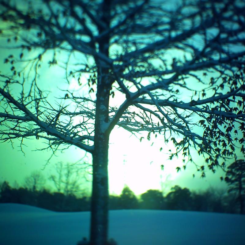 残雪の公園にて