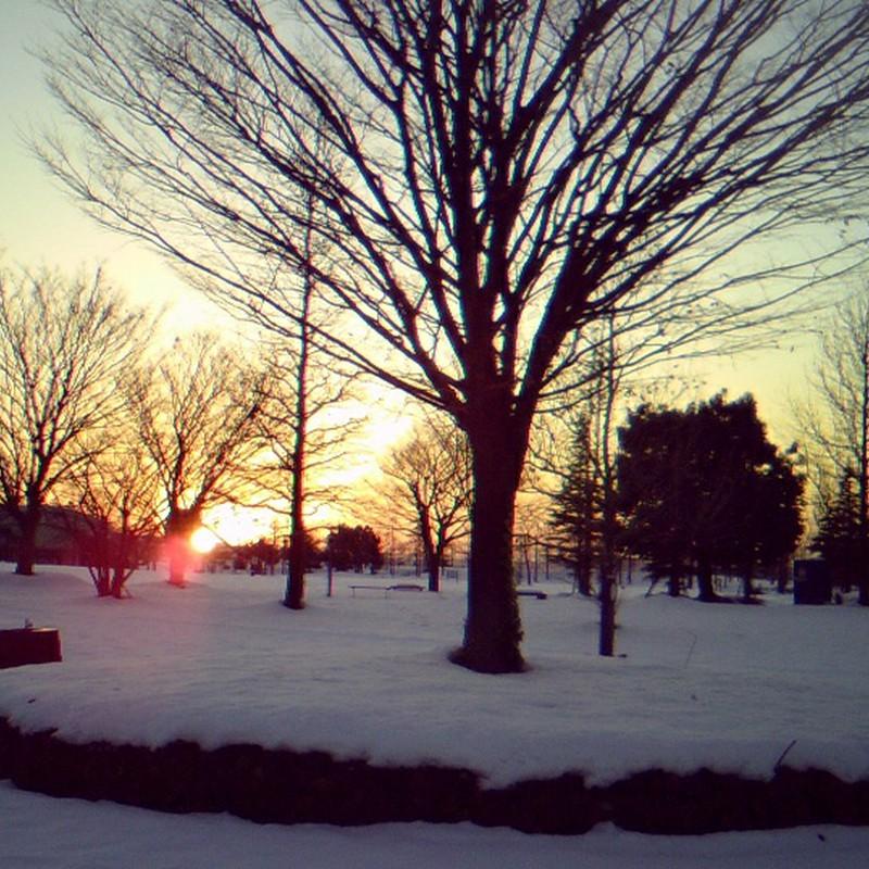 公園から見えた夕日。