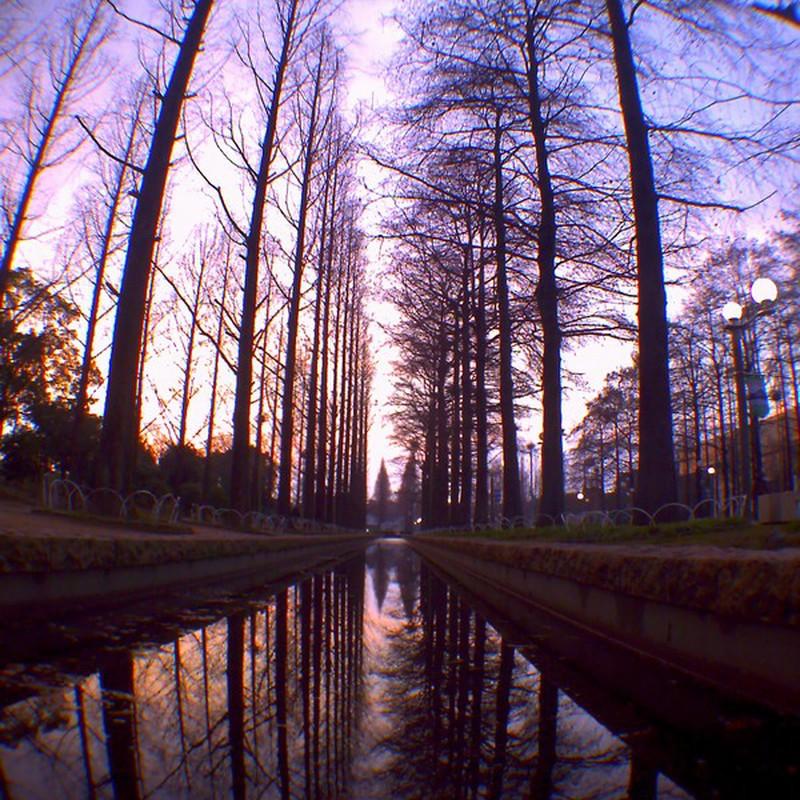 花博記念公園の夕暮れ