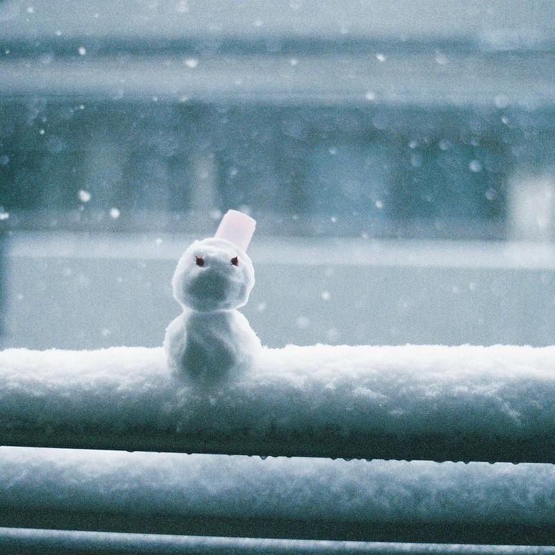 冬をみおくる者