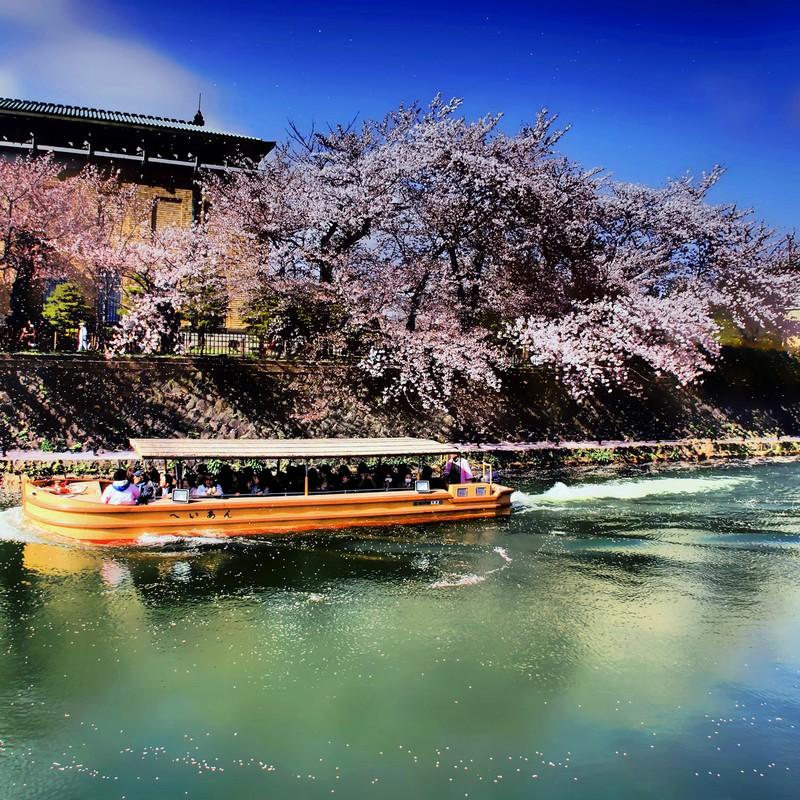 春の十石舟