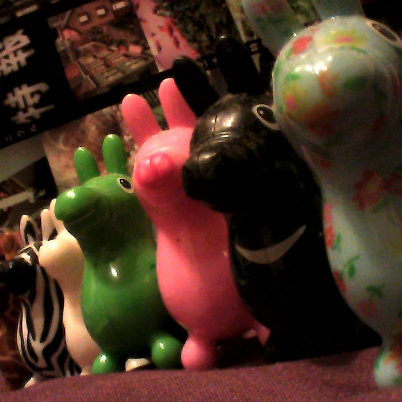 RODY COLLECTION