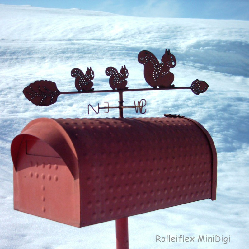 Rolleiflex MiniDigi 冬