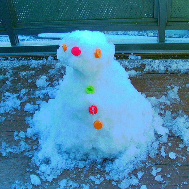 今朝作った雪だるま