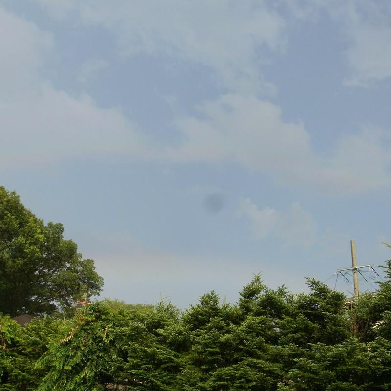 待ちわびた虹