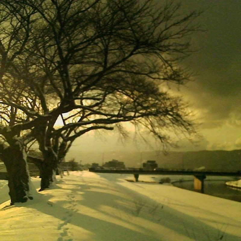 雪景色の堤防