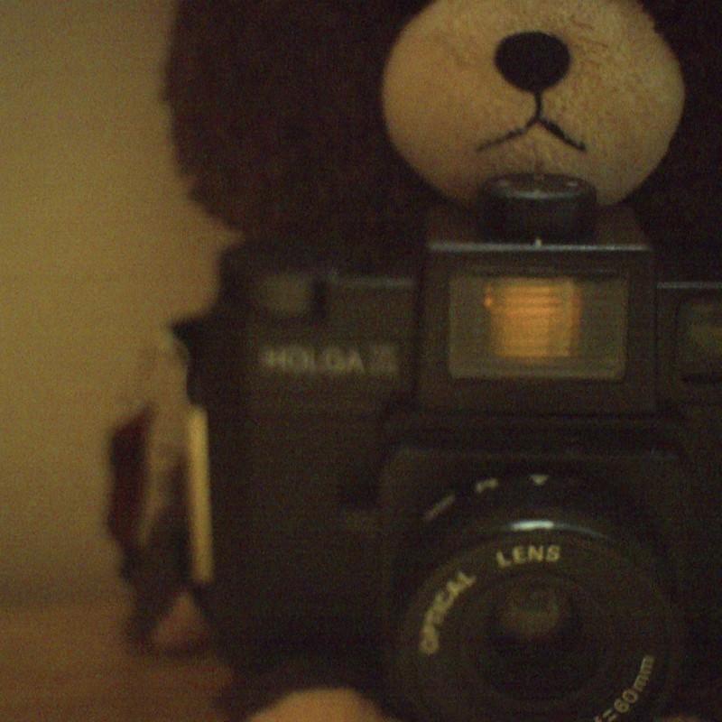 彼のお家から来たクマ