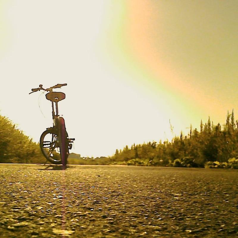 早朝サイクリング