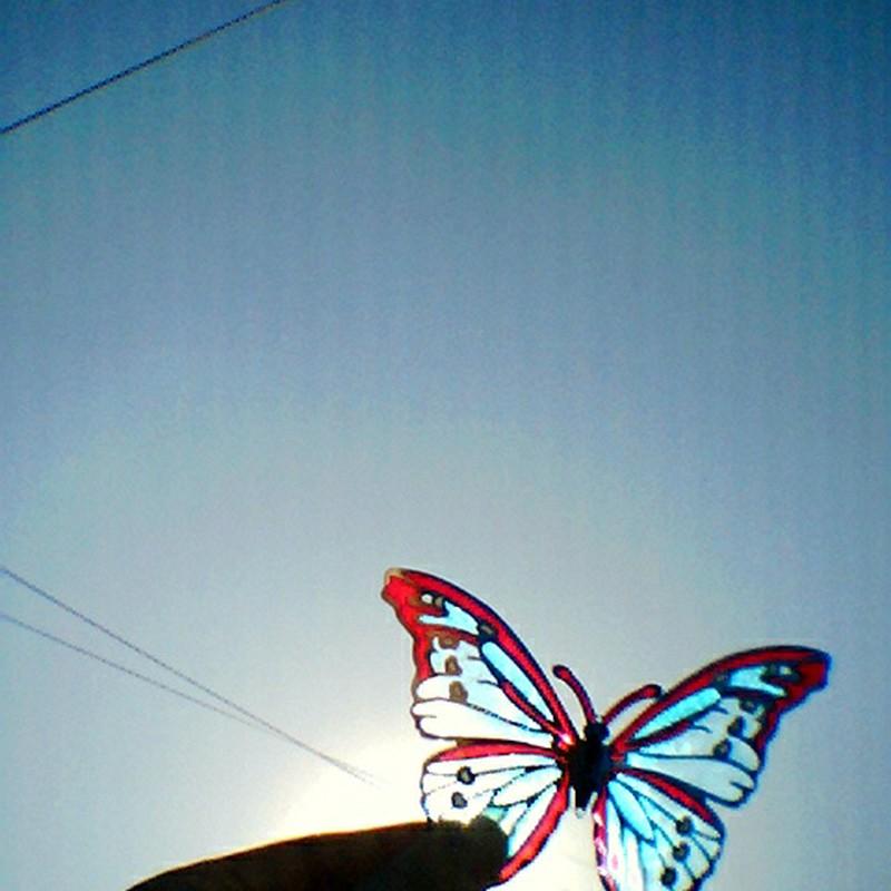 飛び立つ日
