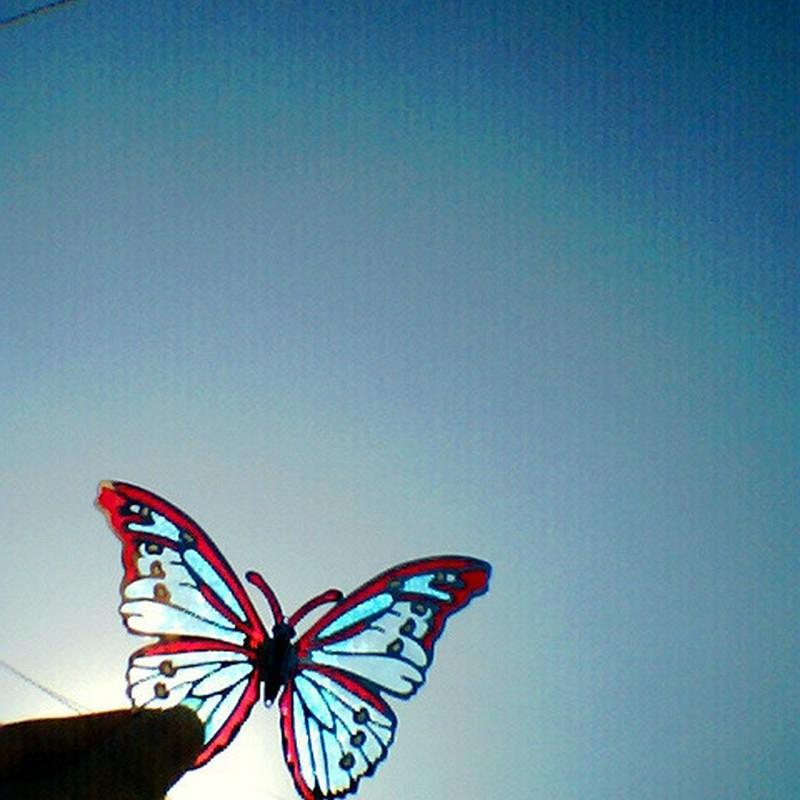 いつの日かきっと、飛んでいける