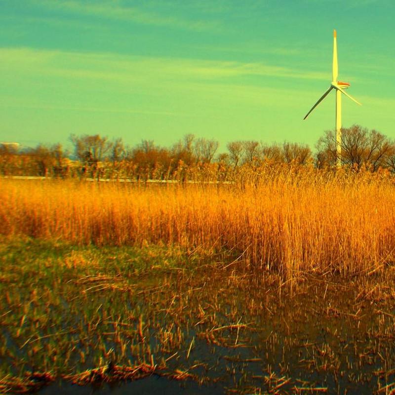止まった風車の朝