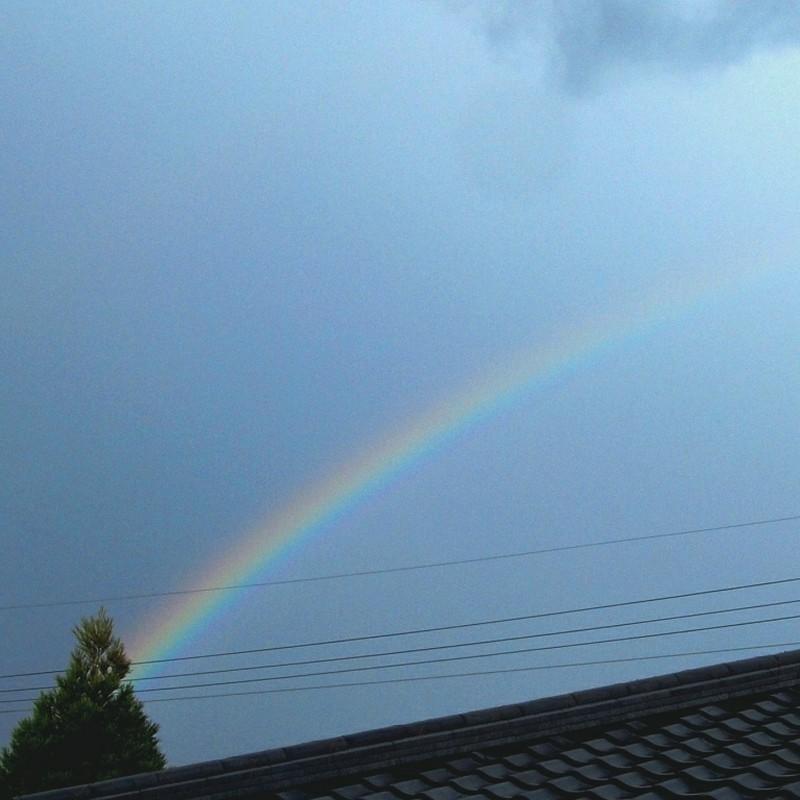 久しぶりに虹を見た