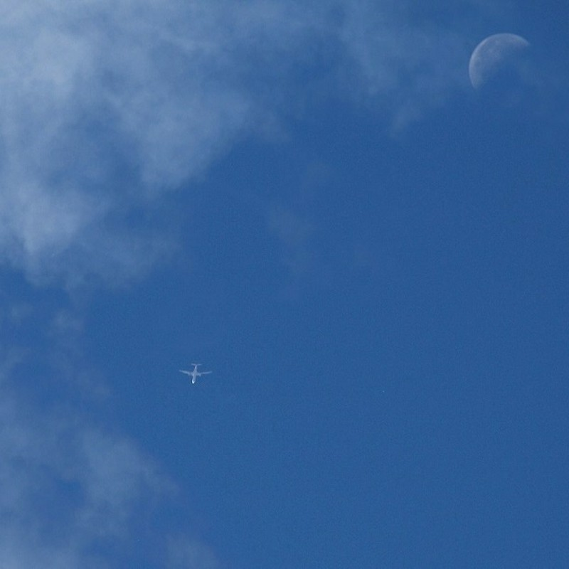 Fly me to the moon♫
