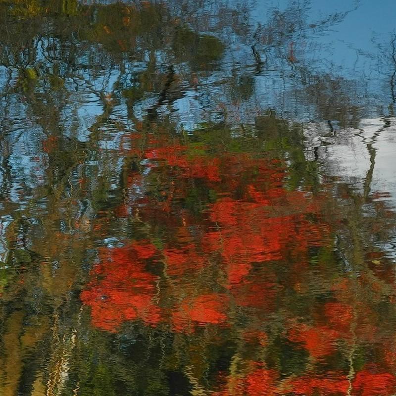 水面の残秋