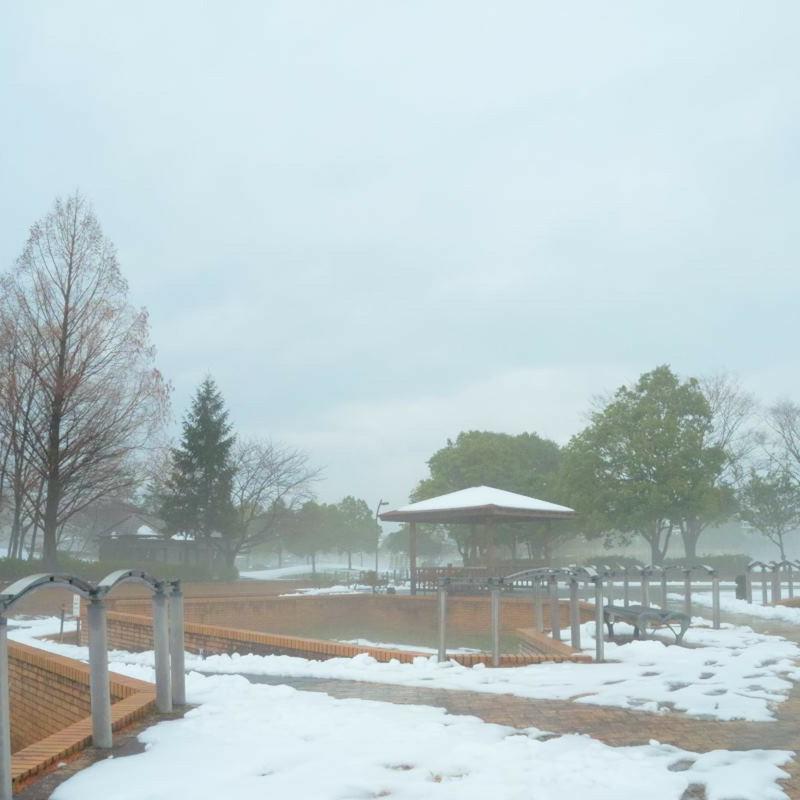 雪霧の公園