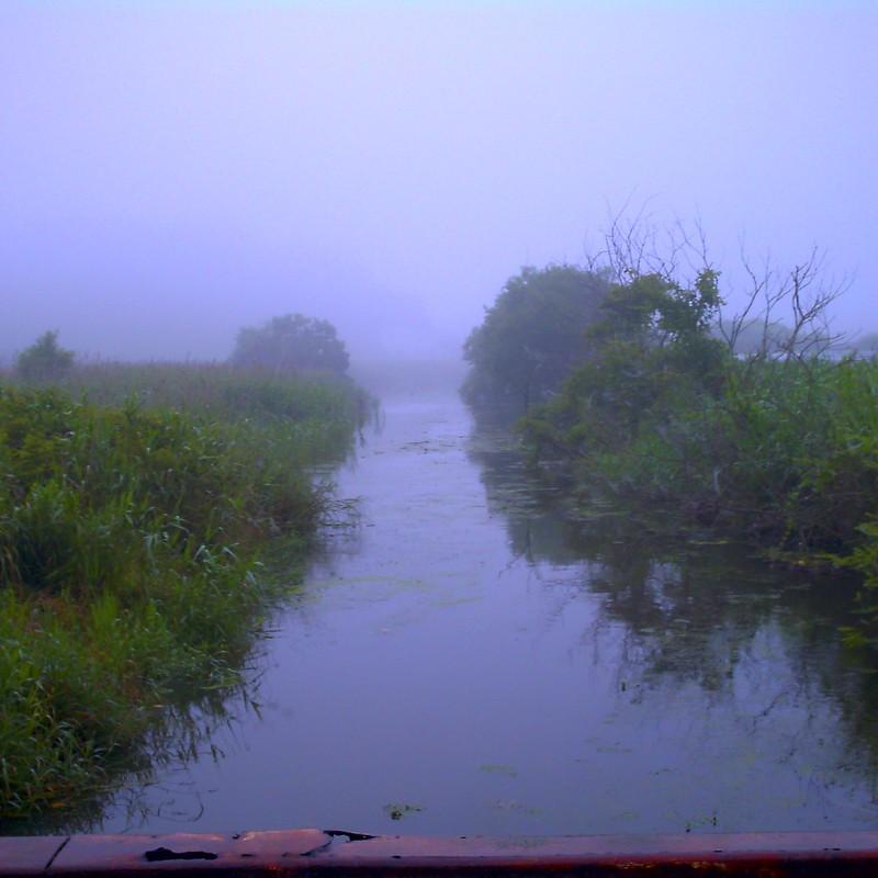 徹夜の朝靄