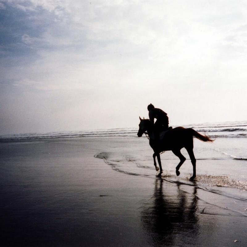 海岸ドップラー